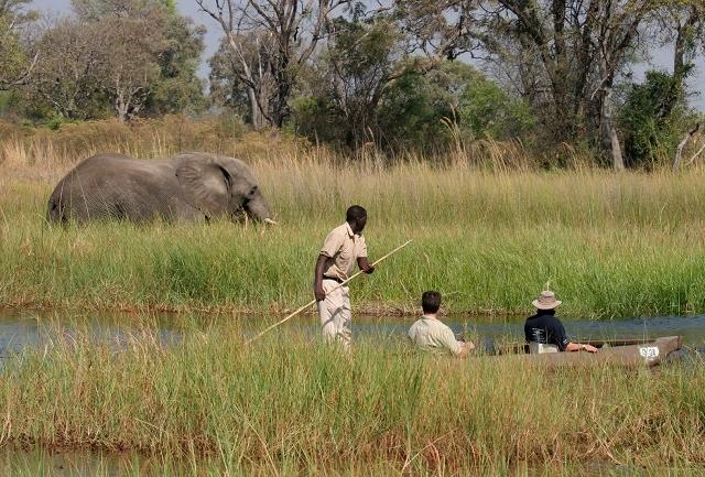 Chobe-Okavango Delta, Victoria Falls Photos