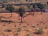 Churu Desert