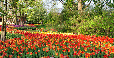 Cincinnati Botanical Garden