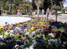 Park Akhisar