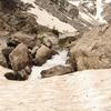 Cleft Falls - Grand Tetons