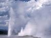 Clepsydra Geyser - Yellowstone - USA
