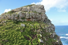 Cliff At Cape Point Nature Reserve SA