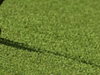 Club De Golf Terramar