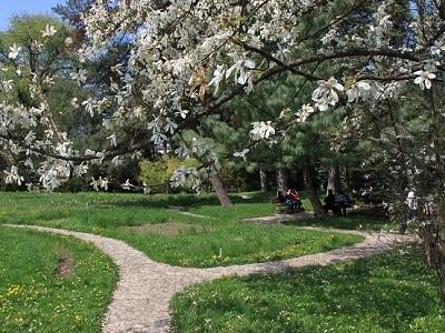 Cluj County - Botanic Garden - Cluj-Napoca