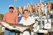 Cobia Fishing Naples - Florida