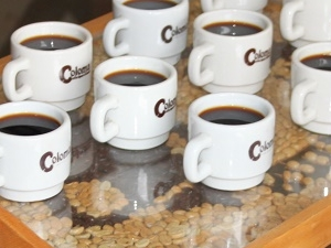 Coffee Tour To Hacienda Coloma