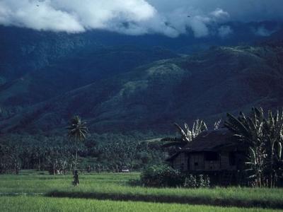 Landscape Around Palu