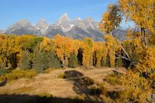 Colors In Grand Teton - Wyoming - USA