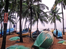 Colors Of Goa In Monsoon