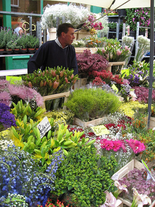 Columbia Road Flowers
