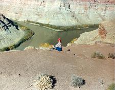 Confluence Overlook - Canyonlands - Utah - USA