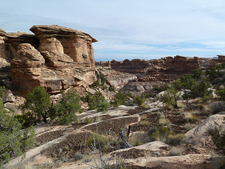 Confluence Overlook Trail - Canyonlands - Utah - USA