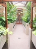 Conservatory Looking Towards Pergola