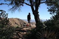 Copper Camp Trail 87 - Tonto National Forest - Arizona - USA