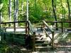Cossatot River-Natural Area