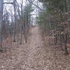 Cottonwood Trail 247 - Arizona