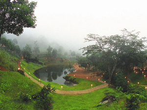 Rain Country Resort