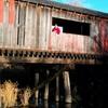 Covered Bridge In Brodhead