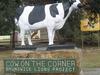 Cow On The Corner