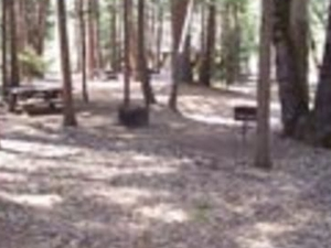 Flat Campground Coy