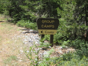 Coyote Campground Grupo