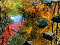 Shuidong Parque Nacional Benxi