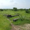 Crematory At Lothal