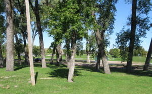 Crookston Central Park Campground