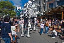 Cuba St. Carnival - Wellington
