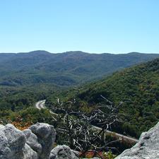 Cumberland Mountains