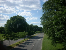 Francis Lewis Boulevard In Cunningham Park