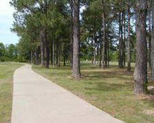 Cypress Tree Golf Course - Course 1