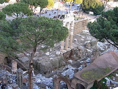 Standing Columns Of Venus Genitrix Temple