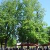Café De Pomone, Jardin Des Tuileries