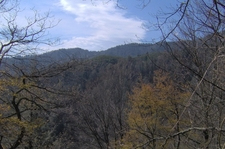 View Of Camel Hump Ridge