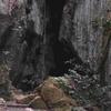 Capricornia Caves Entrance
