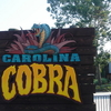 Carolina Cobra Sign