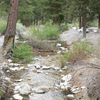 Carpenter Canyon Creek