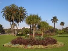 Column Garden