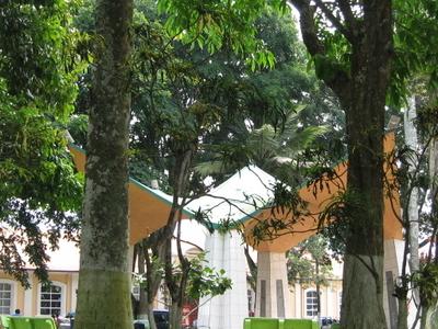 Central Park Downtown San Ramn