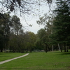 Chavez Ravine Arboretum View