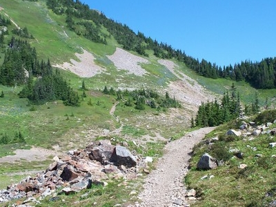 Part Of The Trail Leading To Cheam Peak