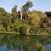 An Island In The Marne River Near Chelles