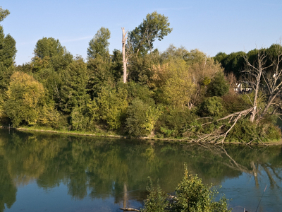 An Island In The Marne River Near Chelles
