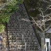 Chihaya Castle
