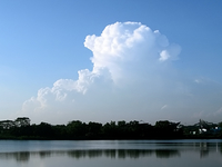 Bajo Seletar Reservoir