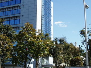 Chiba Instituto de Tecnología