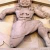 Close Up Of Gorgon