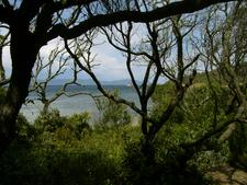 Coast Of Port-Cros